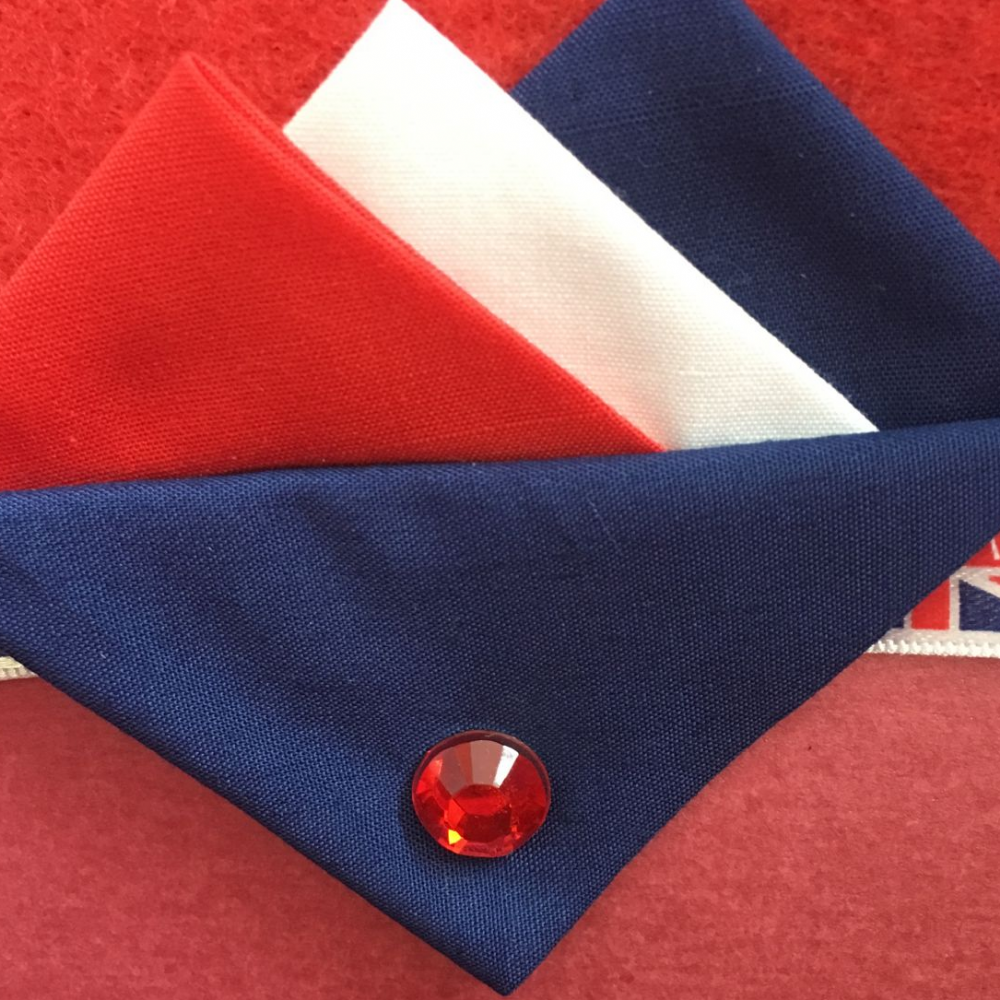 Red, White and Blue Hankie With Blue Flap and Pin